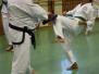 Hyong-Turnier 2013