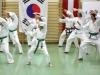 hyong-turnier-2013-0740013