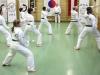 hyong-turnier-2013-0850014