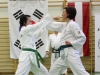 hyong-turnier-2013-0950015