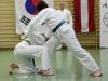hyong-turnier-2013-0970017