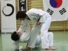 hyong-turnier-2013-1000018