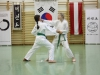 hyong-turnier-2013-1050020