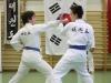 hyong-turnier-2013-1070021