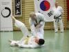 hyong-turnier-2013-1310025