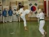hyong-turnier-2013-1480027
