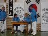 hyong-turnier-2013-1780035