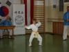 hyong-turnier-2013-1890039