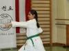 hyong-turnier-2013-2020042