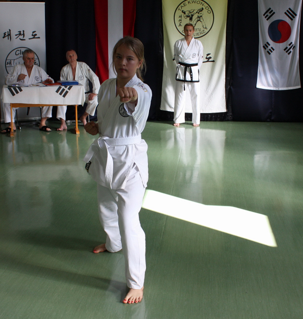 taekwondo begriffe 5 forum